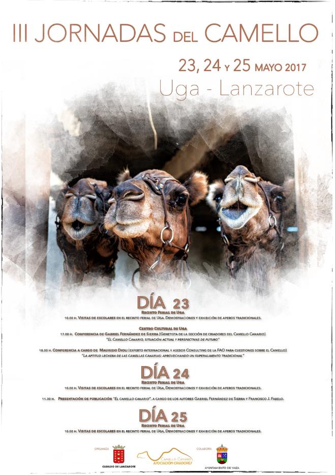 Jornadas camellos Lanzarote 2017