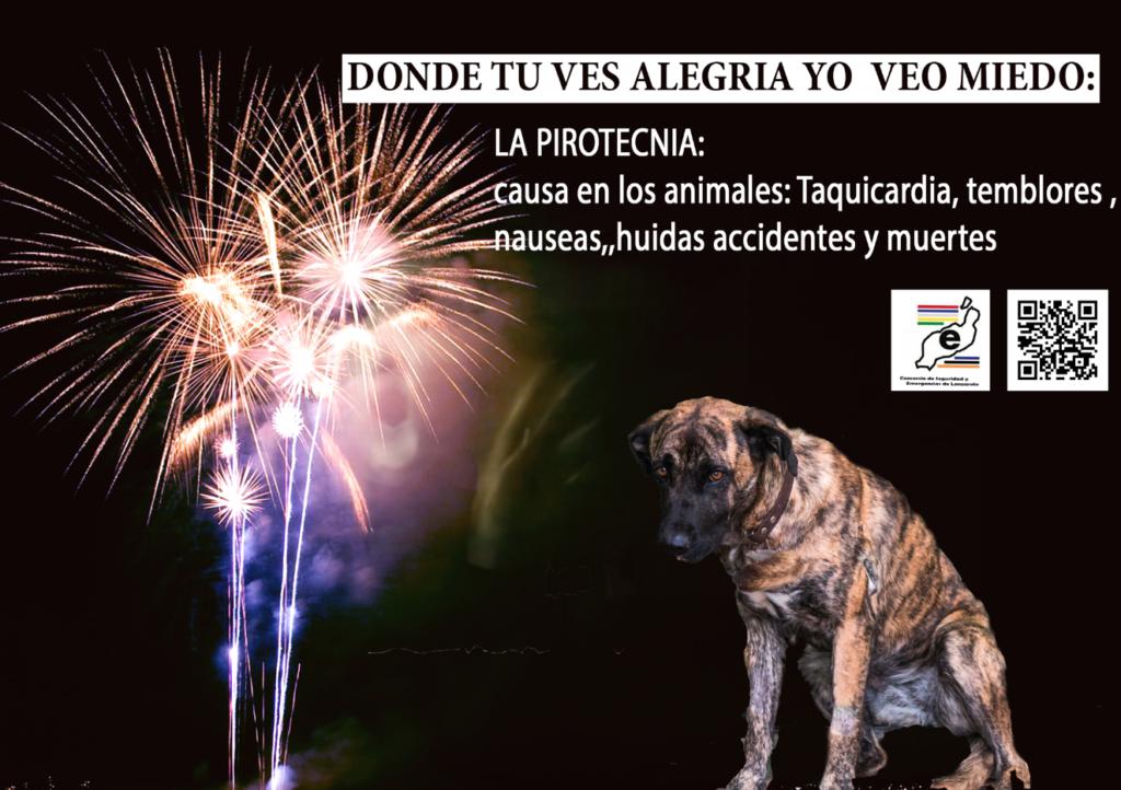 Proteccion mascotas contra petardos y explosivos